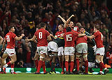 Wales celebrate after beating South Africa
